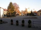 26. listopadu 2011 - stavění vánočního smrku_10