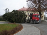 26. listopadu 2011 - stavění vánočního smrku_2