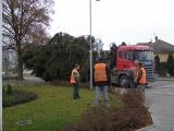 26. listopadu 2011 - stavění vánočního smrku_3