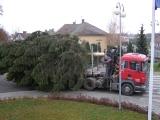 26. listopadu 2011 - stavění vánočního smrku_4