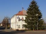 26. listopadu 2011 - stavění vánočního smrku_8