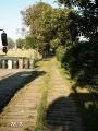 Chodník v aleji ke hřbitovu
