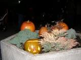 Halloween v ZŠ_2