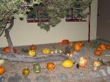 Halloween v ZŠ_3