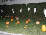 Halloween 2012_11