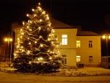 Jak se zdobil vánoční stříbrný smrk - 2. prosince 2010