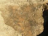 Archeologický výzkum_6