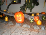 Svátky halloween u ZŠ_14