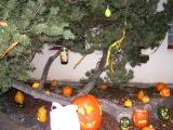 Svátky halloween u ZŠ_15