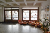 Přednáška o halloweenu_16