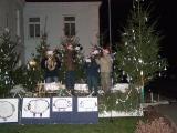 Vánoční strom 2013_10