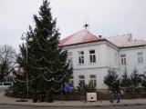 Vánoční strom 2013_1