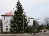Vánoční strom 2013_2