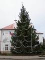 Vánoční strom 2013_3