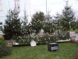 Vánoční strom 2013_5