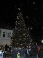 Vánoční strom 2013_8