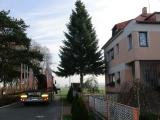 Vánoční strom 2012_2