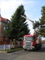 Vánoční strom 2012_4