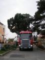 Vánoční strom 2012_9