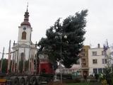 Vánoční strom_13