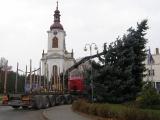 Vánoční strom_15