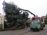 Vánoční strom_18