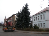Vánoční strom_23
