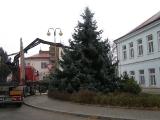 Vánoční strom_24