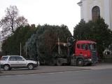 Vánoční strom_2