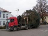 Vánoční strom_5