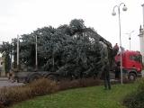 Vánoční strom_7