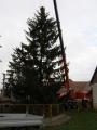 Vánoční strom_10