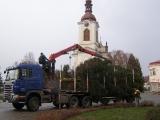 Stavění vánočního stromu 2015