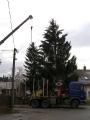 Vánoční strom_4